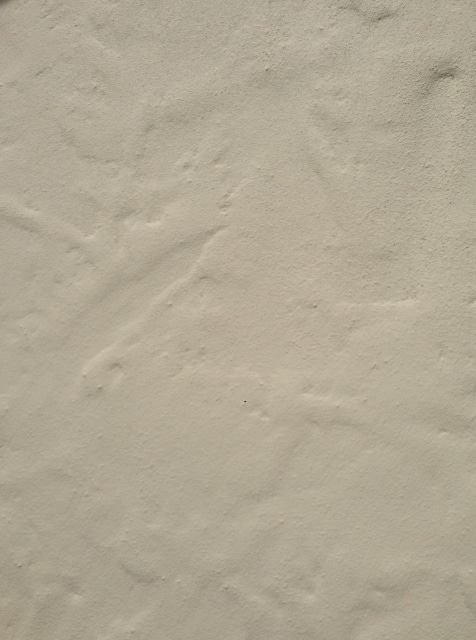 Smooth Stucco Medium